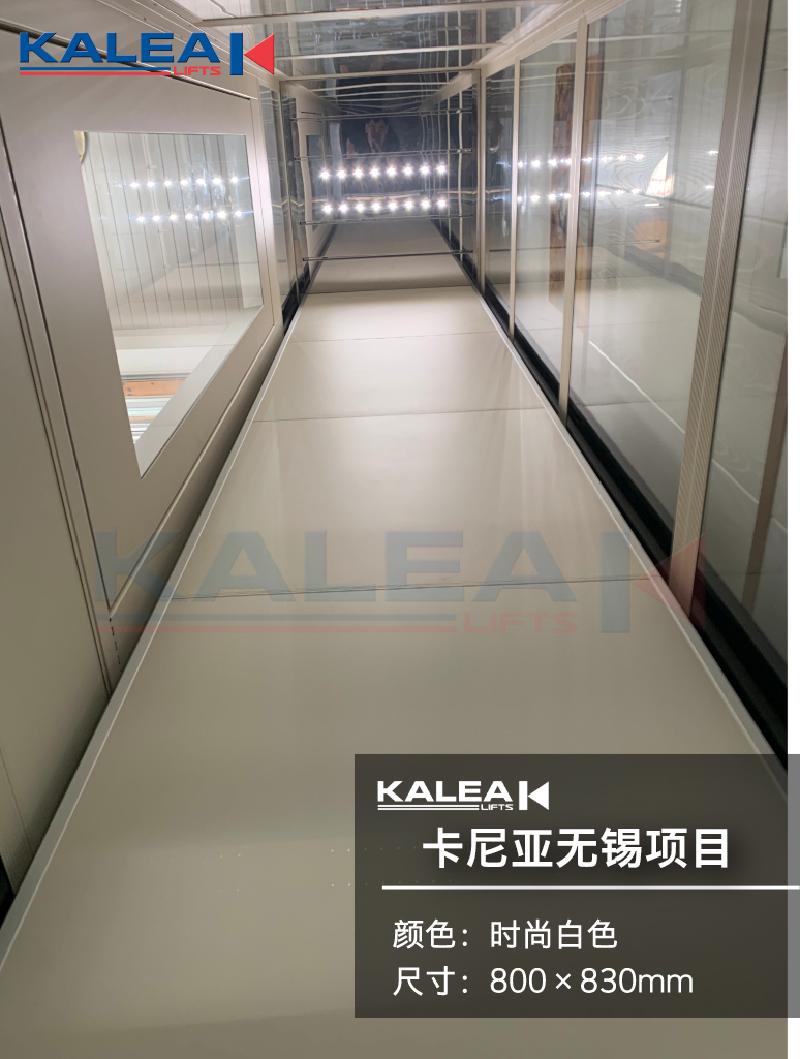 卡尼亚家用电梯KALEA K300